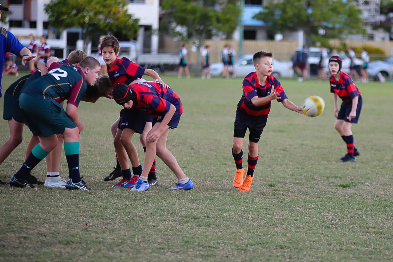 Rugby-Sevens-Suncoast-14